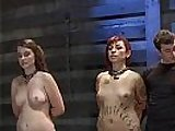 Four Slaves Get Trained